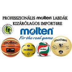 MOLTEN Sportlabdák