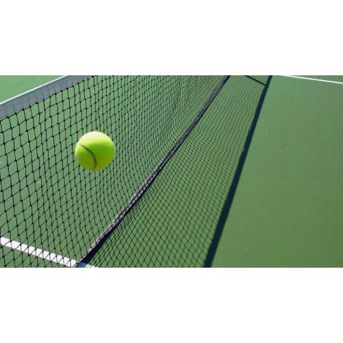 teniszhalo