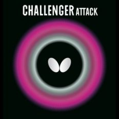 Butterfly-Challenger-Attack-boritas
